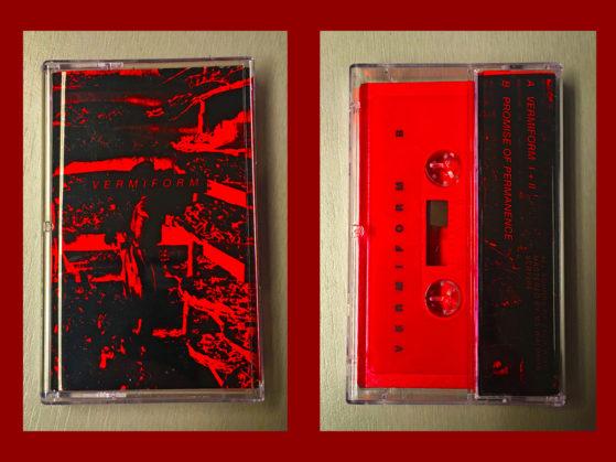Scarcity: Vermiform cassette